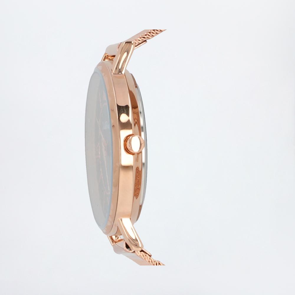 carlorino watch A93301 G007 32 2 - Roman Indulgence Mesh Band Timepiece