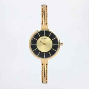 carlorino watch A93301 G014 02 1 300x300 - A Meshy Business Mesh Band Timepiece